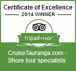Trip advisor certificate of excellence, shore tour excursions